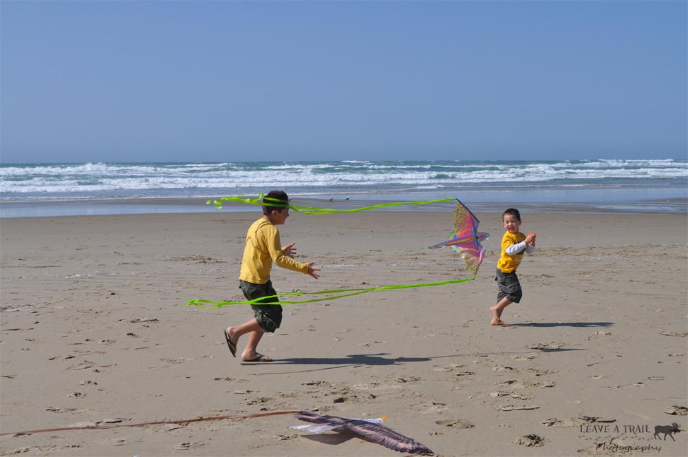 The Boys Flying Kites at Rockaway Beach