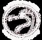 VS Logo New 1_edited_edited.png