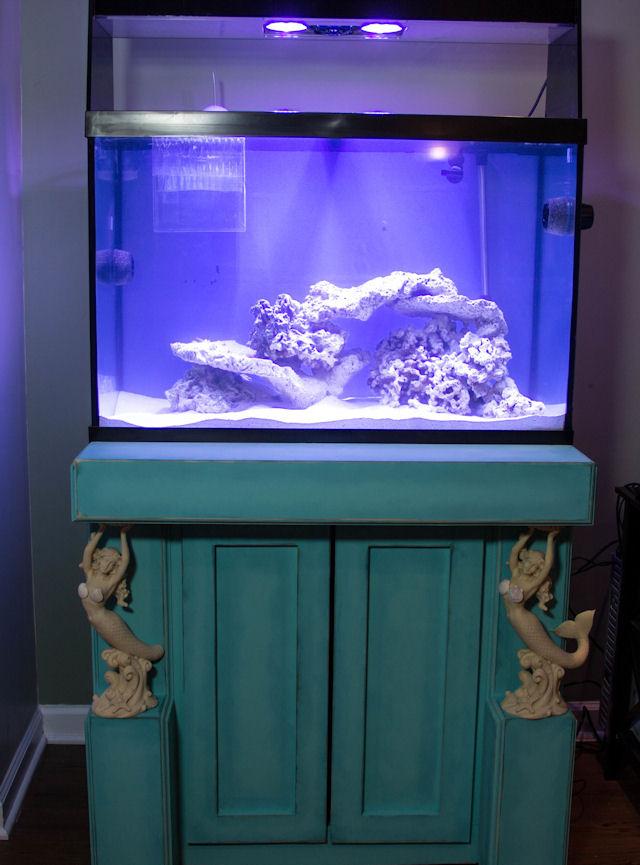 Mermaid stand