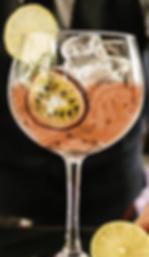 gin p - copia - copia.PNG