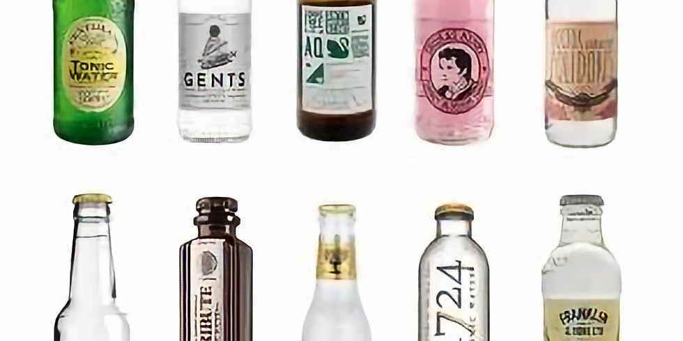 Which Tonic for Which Gin? Let's Taste, Learn and Explore!