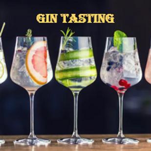 Degustación de Gin