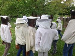 chez l'apiculteur 4