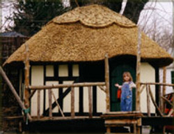 Thatched Tree Fort