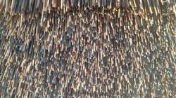 Dressed water reed