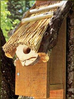 Thatched Bluebird Box