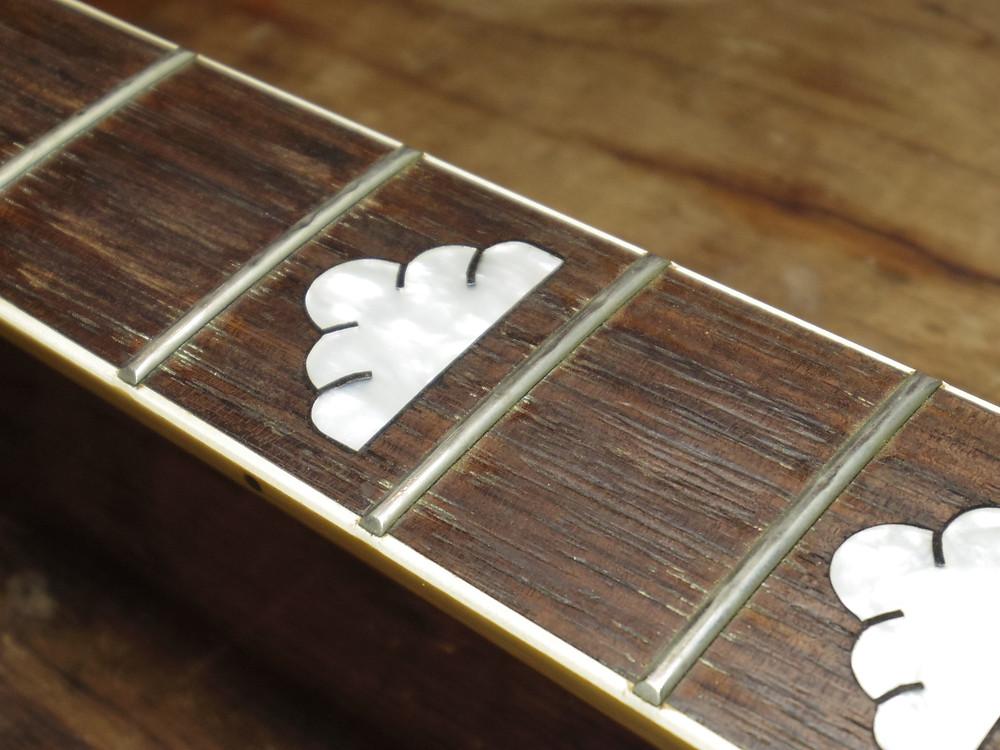 弦を取り外した指板