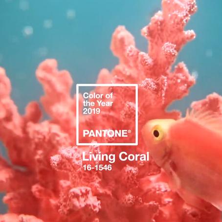 Институт Pantone назвал главный цвет 2019