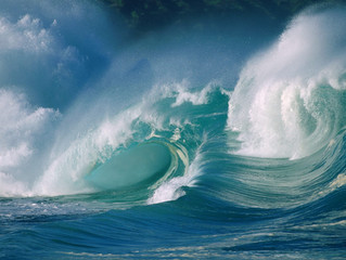Life is Fluid...