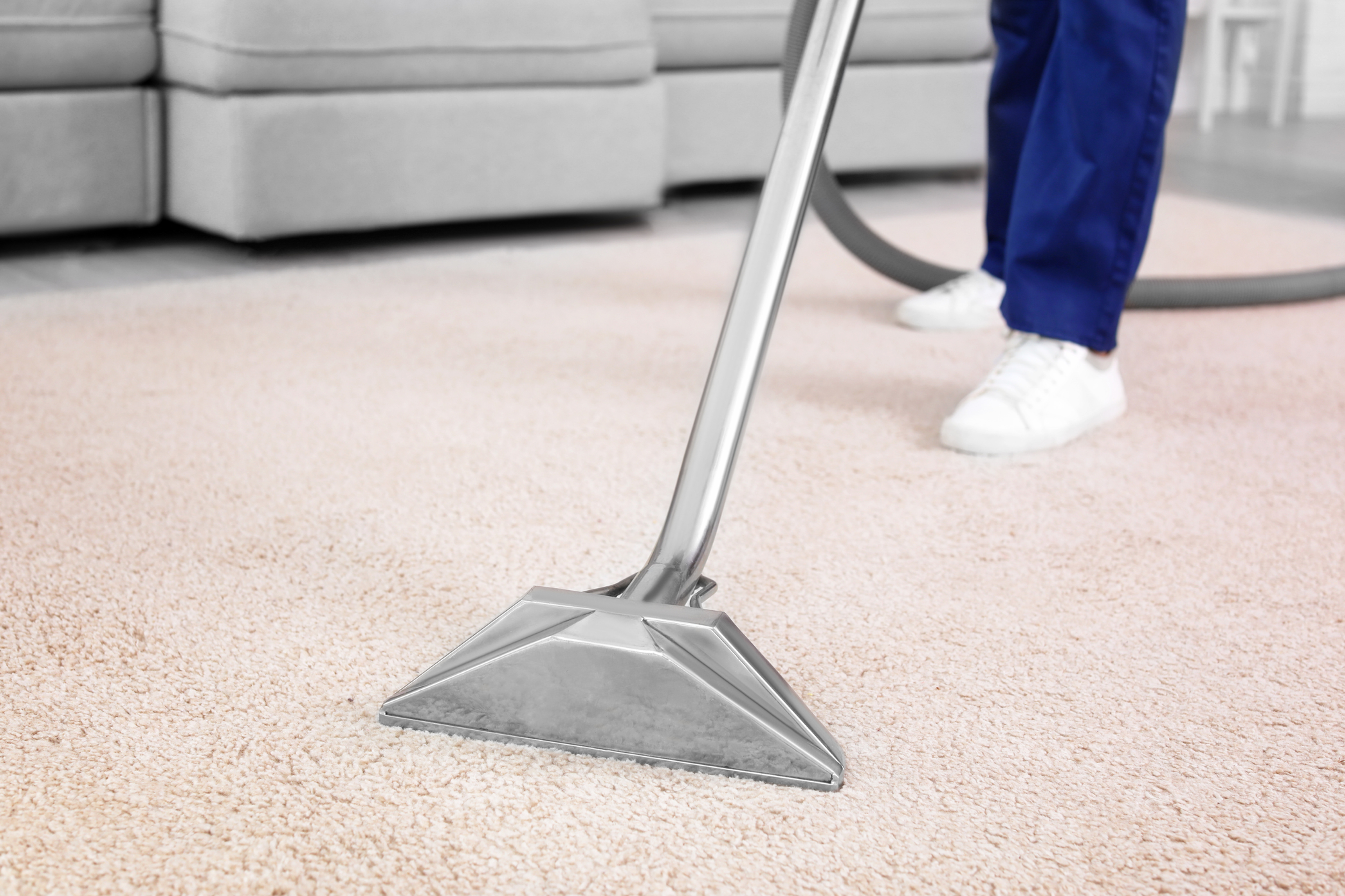 3 STANDARD Room Carpet Cleaning