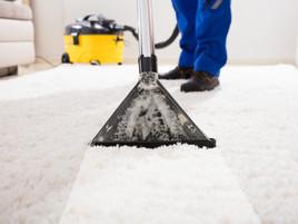 carpet cleaning 5.jpeg