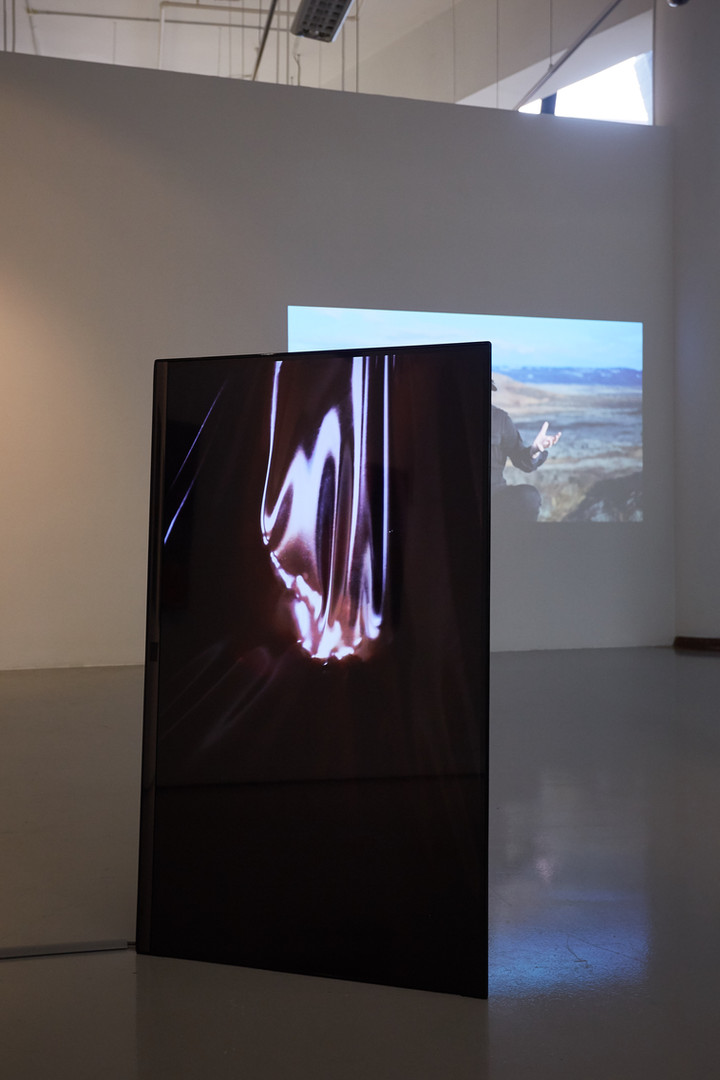 in 'Object of Desire', 2018 ICA Singapore exhibition