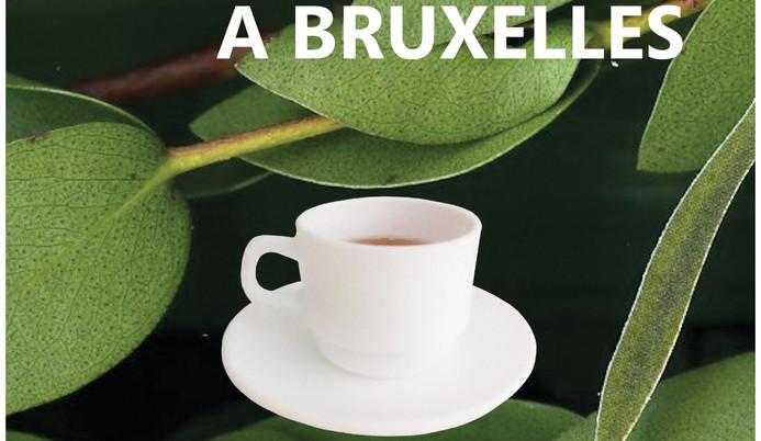 Un Living A Bruxelles