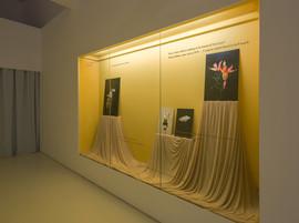 Installation view of Beige Dreams in NTU-CCA