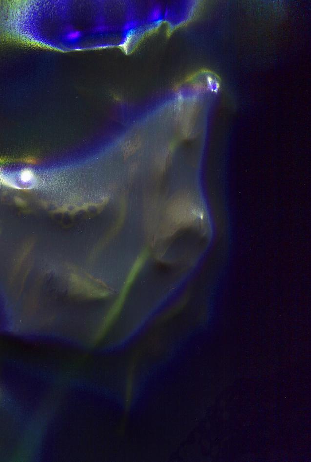 silk image 2
