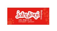 Jabulani_v2.png