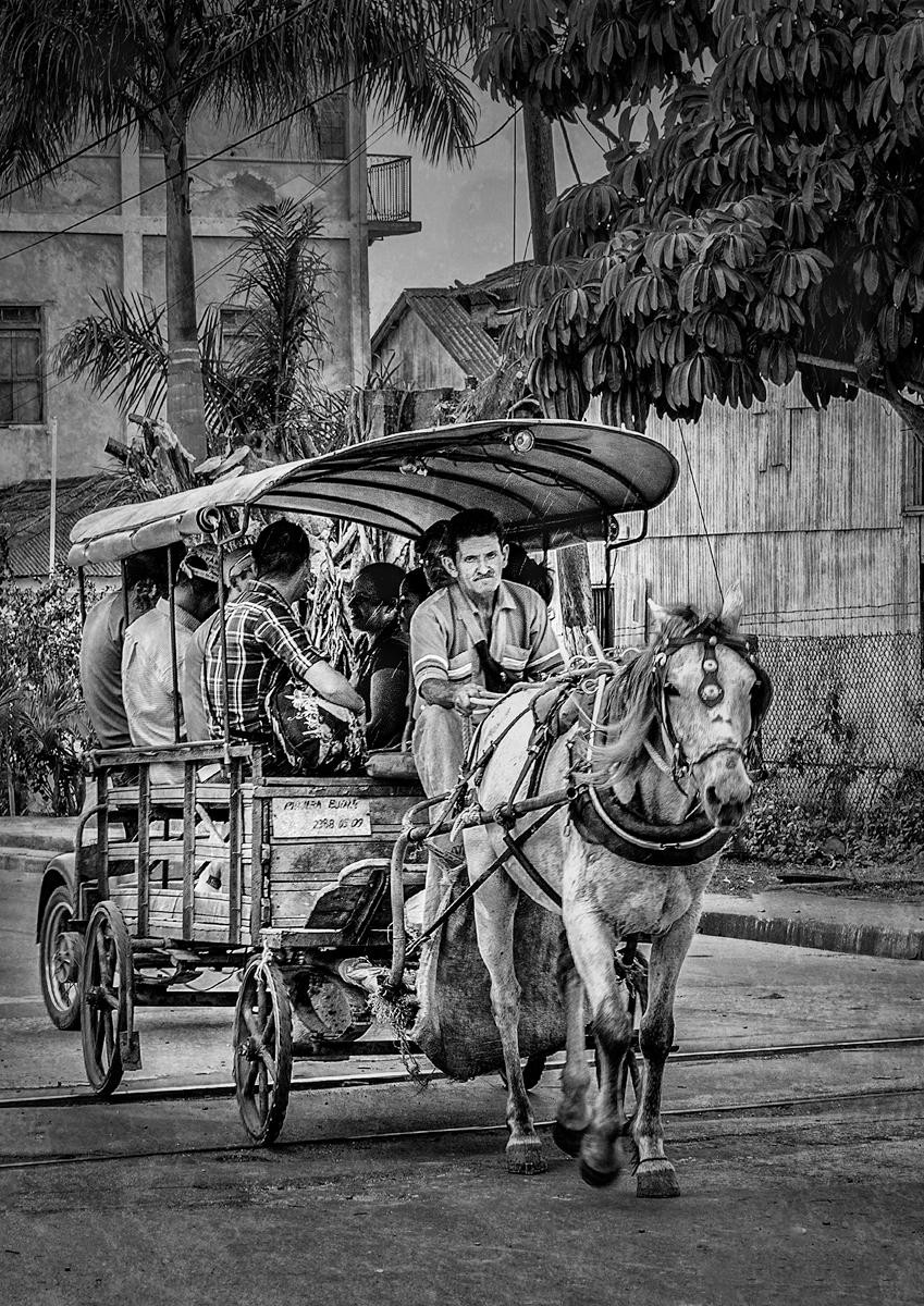 MONO - Horse Drawn Taxi, Cuba by Maurice O'Flaherty ( 11 marks)