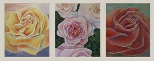 Tre rosor - Three Roses