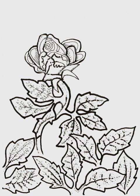 Jeg plantet, Apollos vannet, men Gud ga vekst. Derfor er de ikke noe, verken den som planter eller den som vanner. Bare Gud er noe, han som gir vekst.  Den som planter og den som vanner, er ett, men de skal få lønn hver etter sitt eget arbeid. For vi er Guds medarbeidere, og dere er Guds åkerland, Guds bygning. - Paulus' første brev til korinterne Kapittel 3