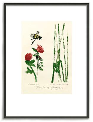 Humla og kløveren - The bumblebee and the clover