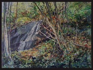 Inni skogen In the Forest