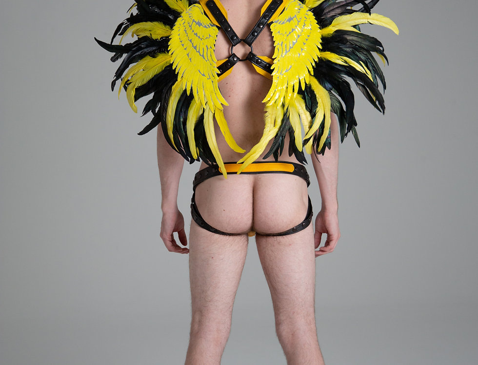 X LEATHER HARNESS YELLOW WINGS