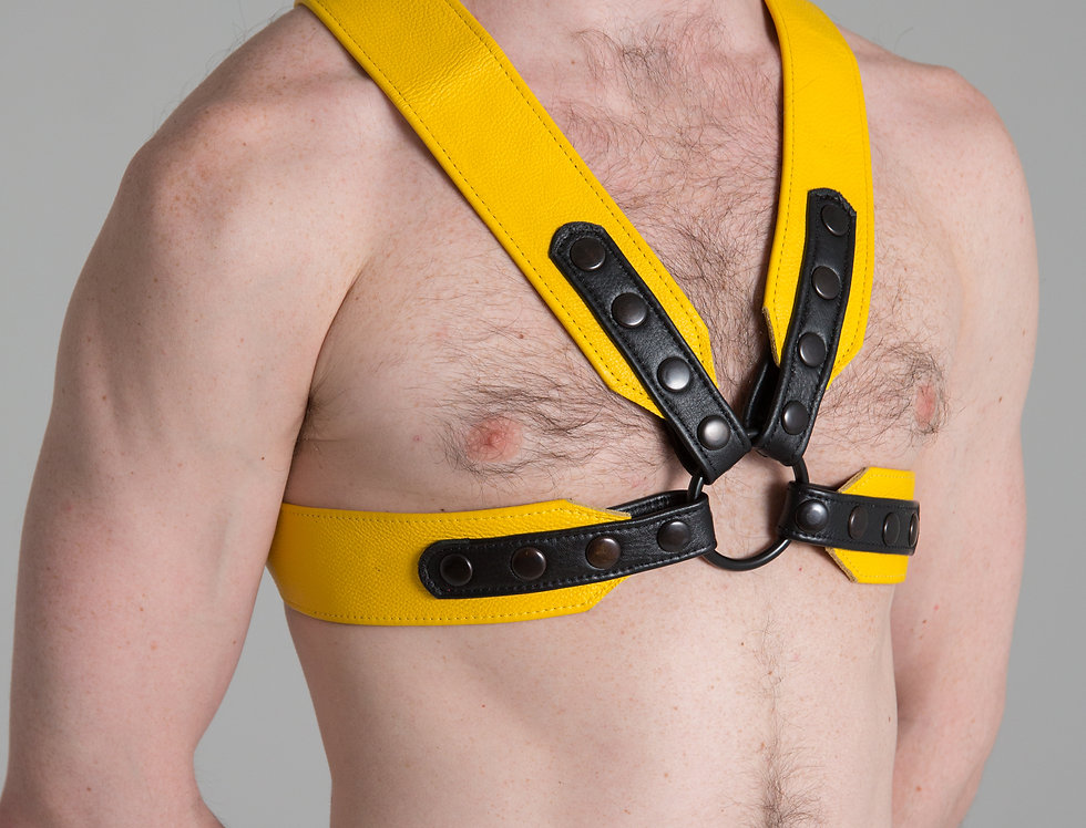X LEATHER BLACK AND YELLOW HARNESS with black snaps and ring