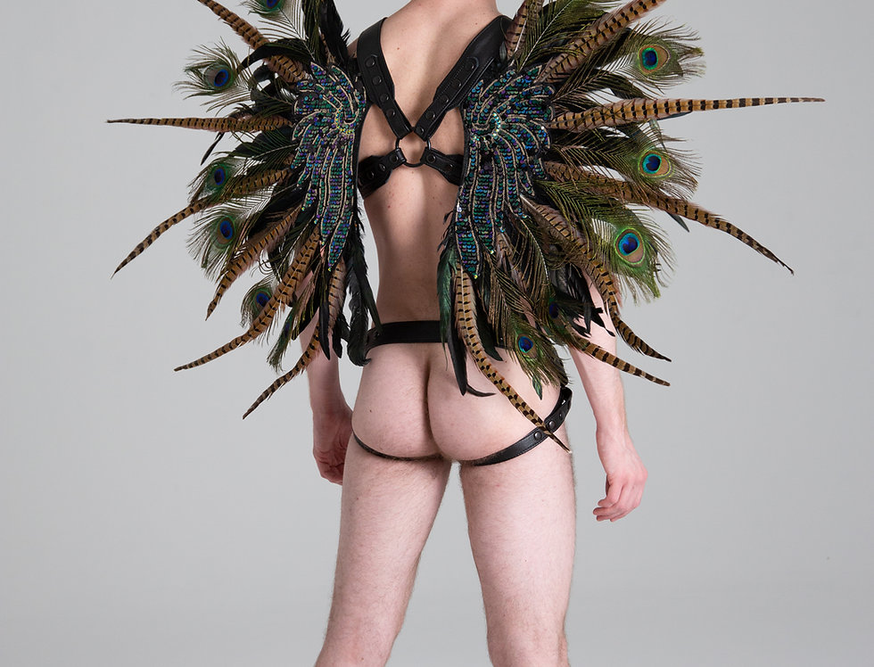 X LEATHER HARNESS PHESANT AND PEACOCK WING