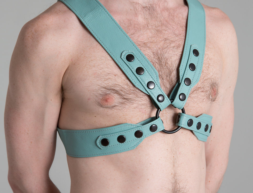 X LEATHER SKY BLUE HARNESS with black snaps and ring