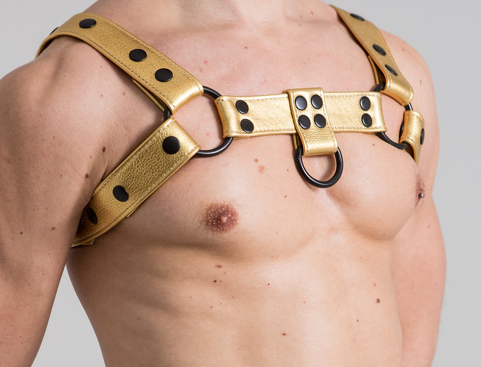 BULLDOG METALLIC GOLD LEATHER with silver or black snaps and ring