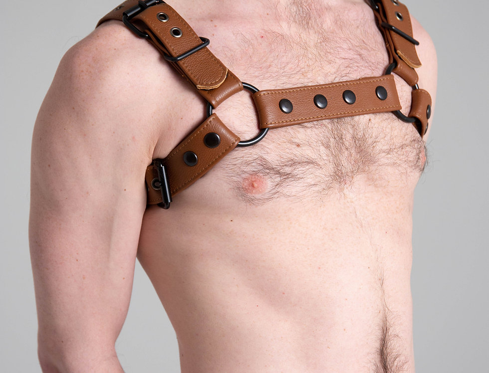 BULLDOG BROWN LEATHER with black or silver buckle and snap