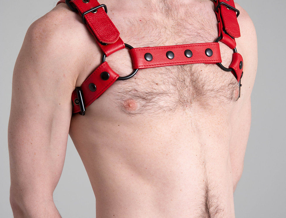 BULLDOG RED LEATHER with black or silver buckle and snap