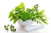 fresh herbs for herbal treatments