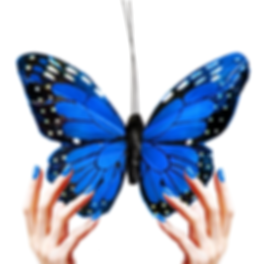 Hands holding a butterfly_edited.jpg.png