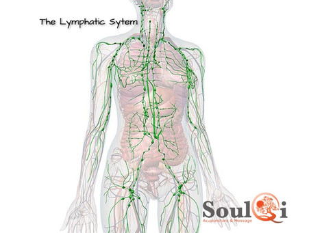 The Amazing Lymphatic System....