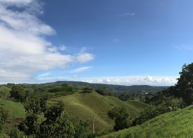 This is a panoramic view of our 2-acre hilltop campus. Our property includes two hilltops separated by a valley. Our Centro Camino building now sits on the right side of this photo, shaded by our large mango tree.