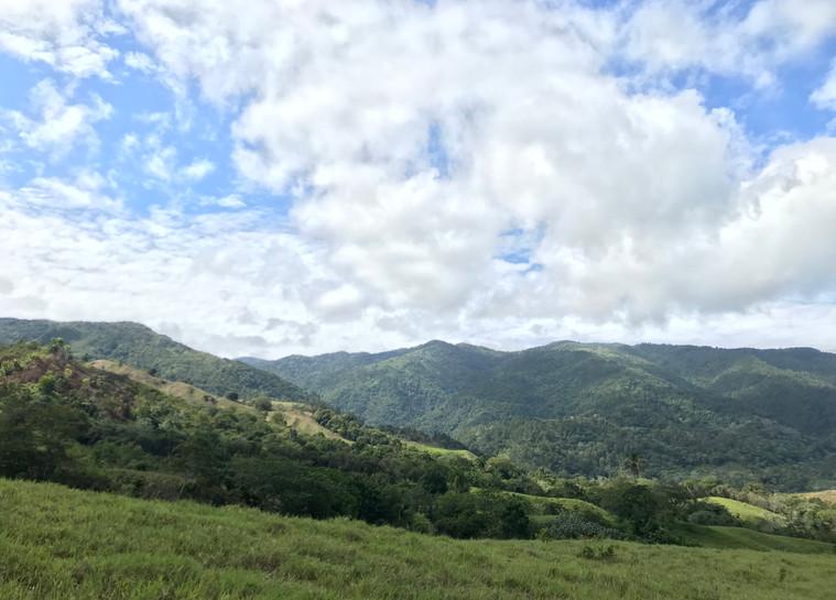 El Faro landscape