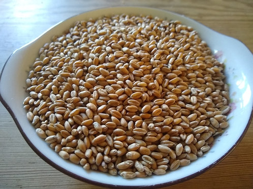 Red Lammas grain 3kg.