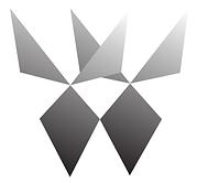 BOTANY & HUSKO DIAMONDS logo.png