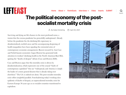 The political economy of the post-socialist mortality crisis