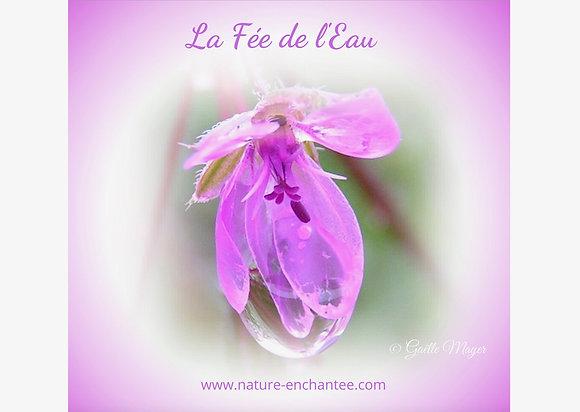 """ECARD """"LA FÉE DE L'EAU"""""""