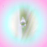 Capture d'écran 2015-04-09 à 11.44.57.pn