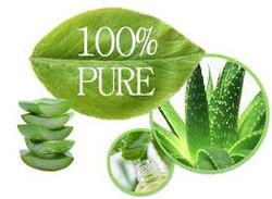 aloe 100% pure