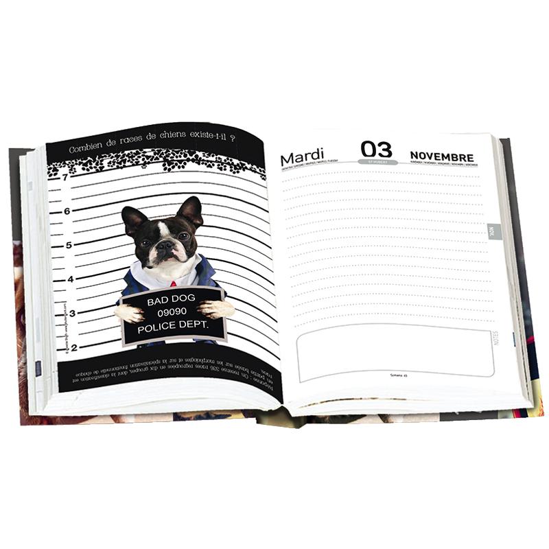 Agenda dog'n Zen