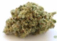 gorilla-glue-four-11-17-2015-medical-can