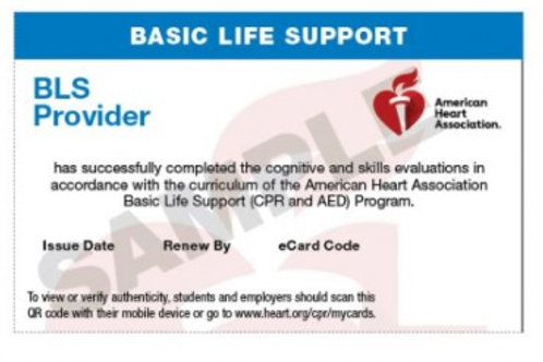 2020 BLS Health Care Provider E-Card