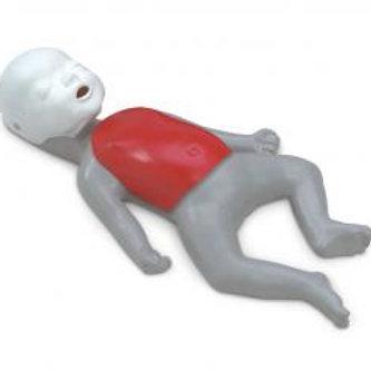 Infant Mannequin Rental