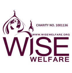 Wise Welfare