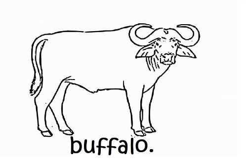 Buffalo Share