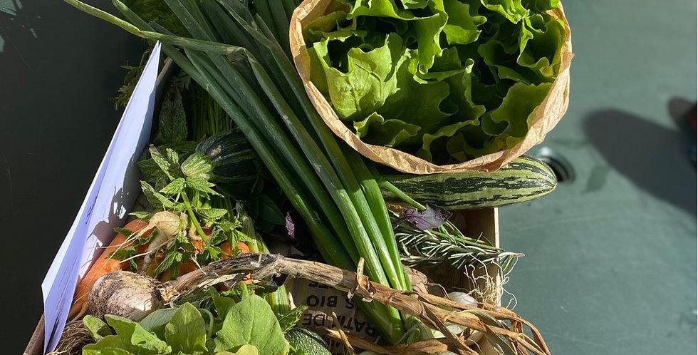 Petit panier légumes